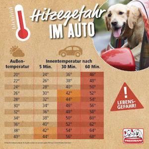 Hitzegefahr im Auto