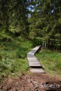 Golzern Wanderweg
