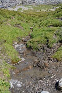 Wanderweg Tannensee