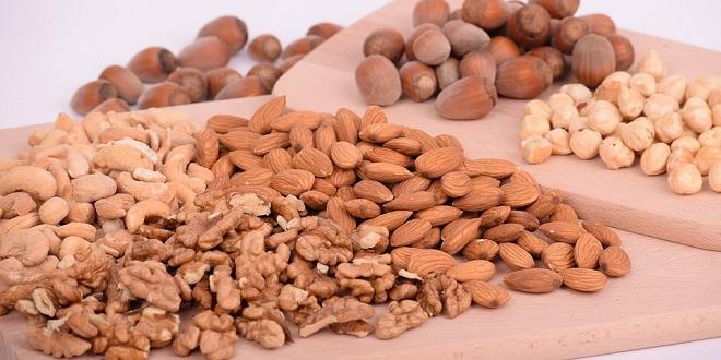 Darf mein Hund Nüsse, Kerne und Samen fressen?